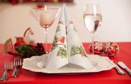 Vianočné prestieranie Wintervogel